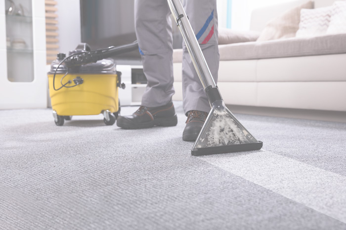 Professional cleaning the carpet with machine