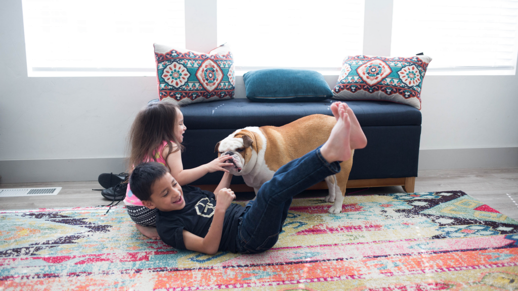 Kids playing with dog in oriental rug